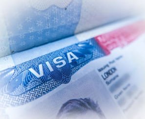 Detail Of A USA Visa